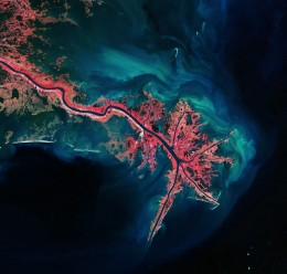 Фантастическое зрелище!!! Это - дельта реки Миссисипи! USGS / ESA